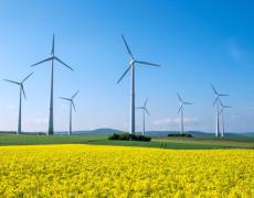 Google investiert in größten Windpark Afrikas +++ Windpark deckt ca. 15 Prozent des kenianischen Verbrauchs ab +++